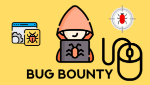 Bug Hunting | IEMLabs